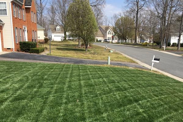 种出完美草坪的六个秘诀