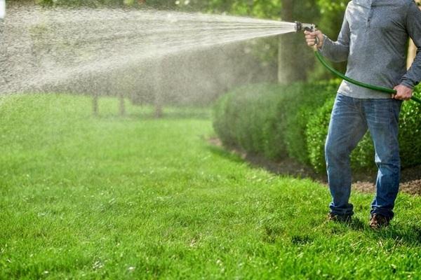 草坪种植中常犯的五个错误